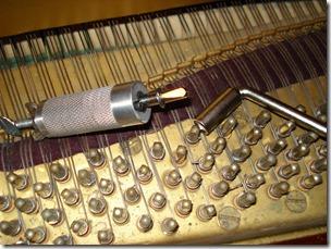 Sciortino String Coiler